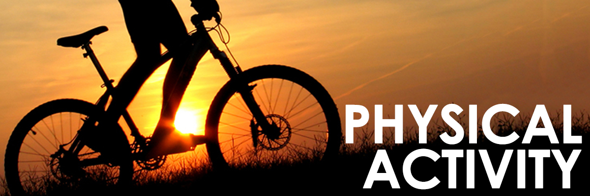 Physical Activity header